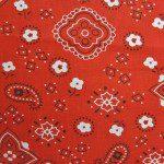 Paisley Bandanna Cotton Printed Fabric Red