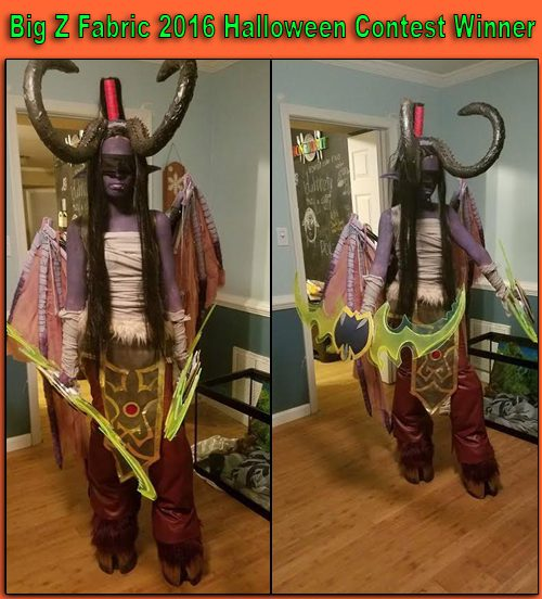 Big Z Fabric 2016 Halloween Costume Contest Winner